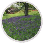 Rowallane Garden, Co Down, Ireland Wild Round Beach Towel
