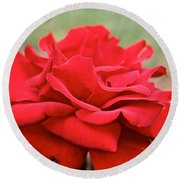 Royal Red Rose Round Beach Towel