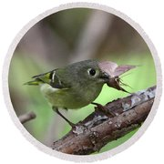 Ruby-crowned Kinglet Nabs A Moth Round Beach Towel