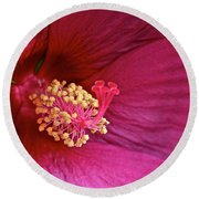 Ruby Hibiscus Round Beach Towel