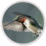 Ruby-throated Hummingbird - Hover Round Beach Towel