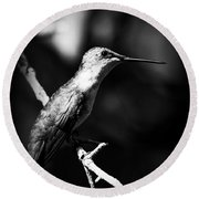 Ruby-throated Hummingbird - Signature Round Beach Towel
