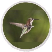 Ruby-throated Hummingbird - Twirling Round Beach Towel