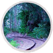 S Curve In The Forest Round Beach Towel