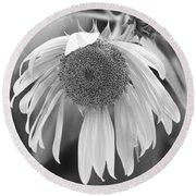 Sad Sunflower Black And White Round Beach Towel