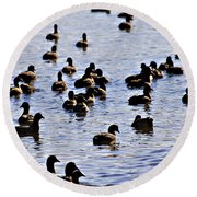 Safety In Numbers Round Beach Towel by Douglas Barnard