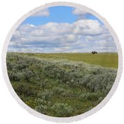 Sagebrush And Buffalo Round Beach Towel