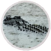 Salt Water Crocodile 3 Round Beach Towel