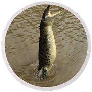 Salt Water Crocodile Round Beach Towel