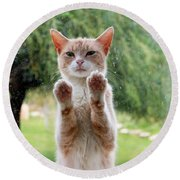 Salute Cat Round Beach Towel