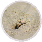 Sand Crab Digging His Hole Round Beach Towel