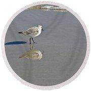 Sanderling Sandpiper - Calidris Alba  Round Beach Towel