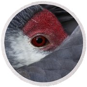 Sandhill Crane At Rest Round Beach Towel