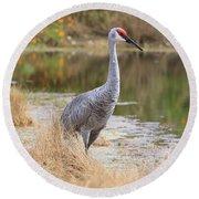 Sandhill Crane Beauty By The Pond Round Beach Towel