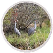 Sandhill Cranes In Colorful Marsh Round Beach Towel