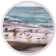 Sandpiper Evening Round Beach Towel