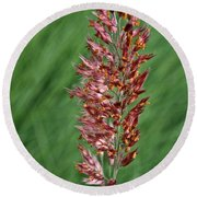 Savannah Ruby Grass Round Beach Towel