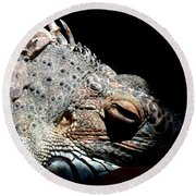 Scales And Spikes Round Beach Towel
