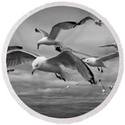 Sea Gull Scavengers Round Beach Towel