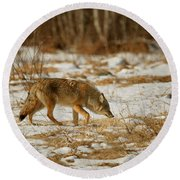 Scent Of A Doe Round Beach Towel