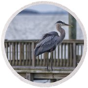 Scruffy Heron Round Beach Towel