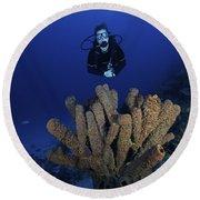 Scuba Diver Swims Underwater Amongst Round Beach Towel