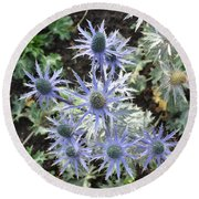 Sea Holly Round Beach Towel