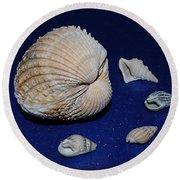 Sea Shells Round Beach Towel