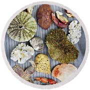 Sea Treasures Round Beach Towel