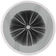 Sea Urchin 1 Round Beach Towel