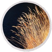 Seagrass In Gold Round Beach Towel