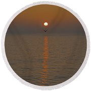Seagull At First Light Round Beach Towel