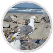 Seagull Bird Art Prints Coastal Beach Bandon Round Beach Towel