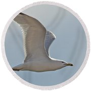 Seagull Soaring Round Beach Towel