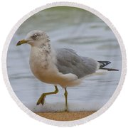 Seagull Stomp Round Beach Towel