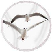 Seagulls Round Beach Towel by Tom Gowanlock