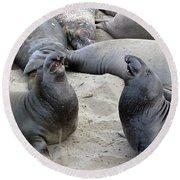 Seal Spa. Men's Talk2 Round Beach Towel