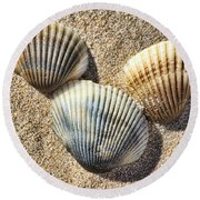 Seashells V2 Round Beach Towel