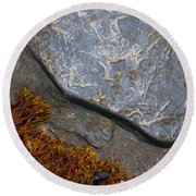 Seaweed And Rock Round Beach Towel