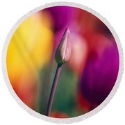 Selective Focus Tulip Flower Field Round Beach Towel