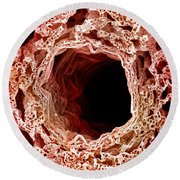 Sem Of Lung Round Beach Towel by Science Source