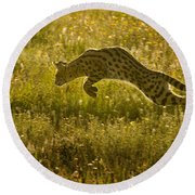 Serval Cat Pouncing Serengeti Round Beach Towel