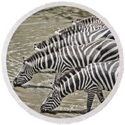 Several Thirsty Zebra Round Beach Towel