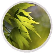 Shades Of Green And Gold. Round Beach Towel