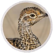 Sharp-tailed Grouse Round Beach Towel