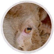 Sheep Close Up Round Beach Towel