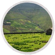 Sheep Graze In A Pasture In Swaledale Round Beach Towel