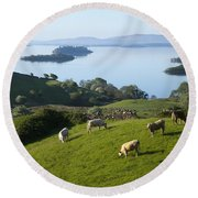 Sheep Grazing By Lough Corrib Cong Round Beach Towel