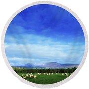 Sheep Grazing In Field County Wicklow Round Beach Towel