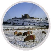 Sheep On A Snow Covered Landscape In Round Beach Towel